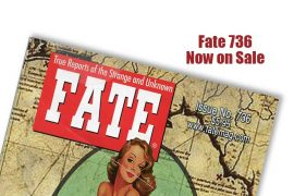 Fate 736 now on sale