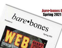 Bare•Bones No. 6